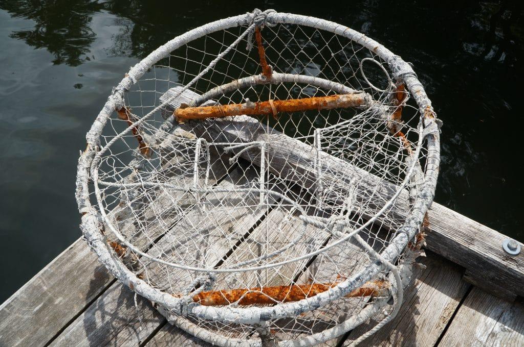 Nasa Pequeña tradicional