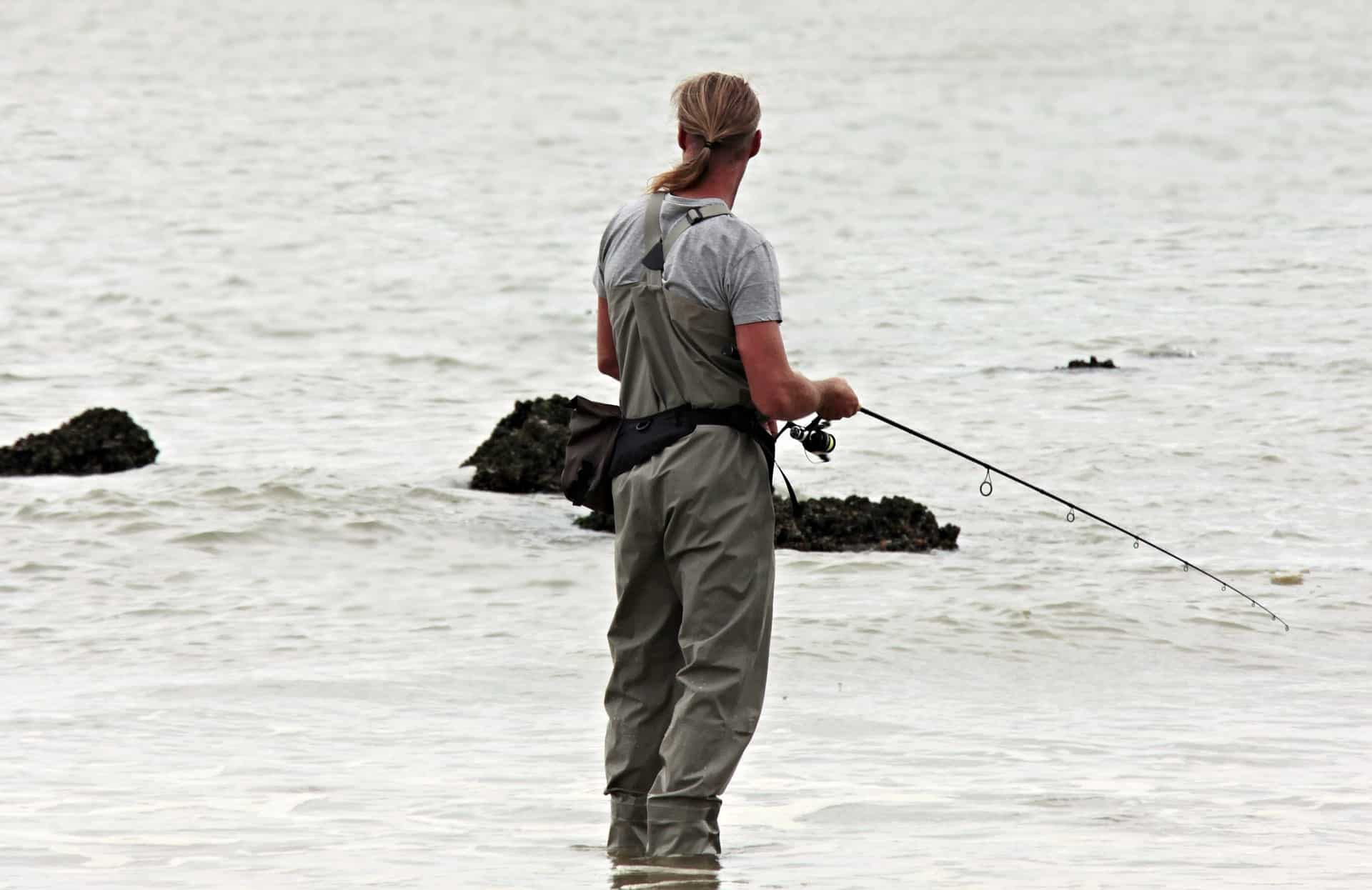 pescador caña costa